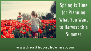 Spring is time for planning what you want to harvest this summer